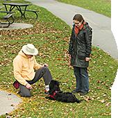 Cours d'éducation canine à domicile Montréal